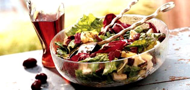 salata me kotopouloo 1